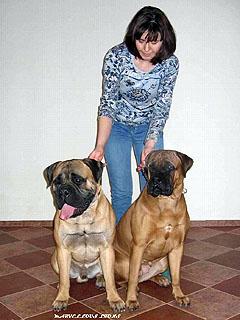 Ваня и Даша