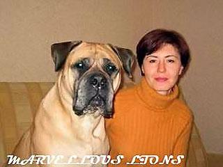 Vlad Bulls Amanda